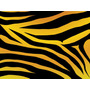 Kit Imprimible Para Tu Fiesta De Animal Print Tigre