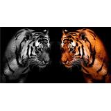 Felinos Tigres En Bastidor Canvas 120x80 Cm Exelente Envios