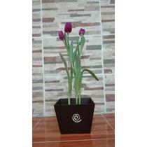 Arreglo Floral Con Tulipanes Naturales.