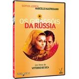 Dvd Os Girassóis Da Rússia Sophia Loren Mastroianni Versátil