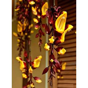 Muda Sapatinho De Judia ( Thunbergia Mysorensis ) 15 A 30cm