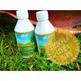 Clorofila 100% Organica Certificada 250ml