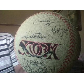 Pelota Gigante De Beisbol Con Autografos