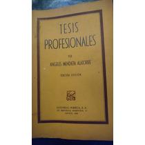 Tesis Profesionales Por Ángeles Mendieta Alatorre
