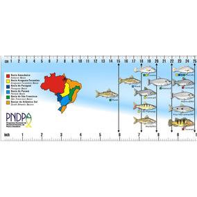 Adesivo Para Barco Regua Medida De Peixes Do Brasil 1 Metro