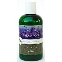 Champú - Orgánico & 100% Ingredientes Naturales - Para Acei