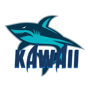 Kawaii Remeras