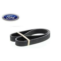 Correia Alternador Ford Focus 2.0 16v 2008/...