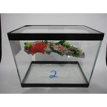 Aquario Terrario Para Tartaruga Nº 2