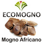 Semente P/ Muda De Mogno Africano Recém Coleta 100g / 490un*