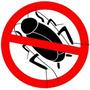 Cebo Mata Cucarachas 100% Efectividad. Lo Que Estas Buscando