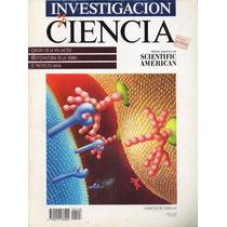 Investigación Y Ciencia - Vía Lactea - Proyecto Maia - 1993