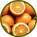 Manuales Para Cultivo De Naranja Paso A Paso