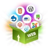 Diseño Pagina Web Gráfico Plantilla Mercado Libre Mercadolib