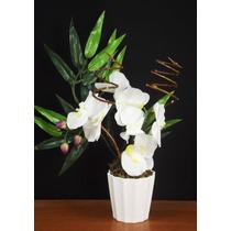 Arranjo De Orquideas Artificial - Vasos Flores Artificiais