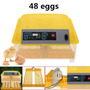 Incubadora De 48 Huevos Automatica Gallina Godorniz Pato, Pa