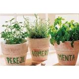 Plantines De Huerta Gran Variedad