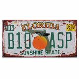 Placas De Carros Americanos - Florida