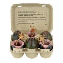 Coleccionable Neca Del Cartón De Huevos De Alien Paquete De