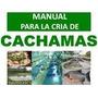 Guia Cria De Cachamas Digital Pdf Envio Gratis Ya Mismo