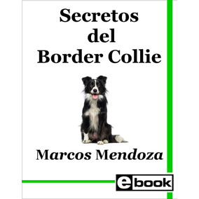 Border Collie - Libro Adiestramiento Cachorro Adulto Crianza