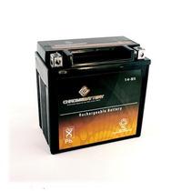 Atv Batería Ytx14-bs Para Honda Trx 500 420 450 350 300 Rubi