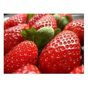 Sementes Morango Sensação P/ Clima Brasil Fruta Horta Mudas