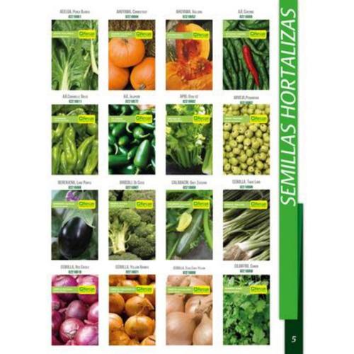 Kit 1000 Semillas Organicas 20 Variedades