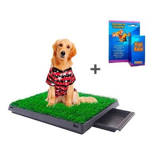 Baño Ecológico Portátil Grande Pet Potty Con Bandeja + Regal