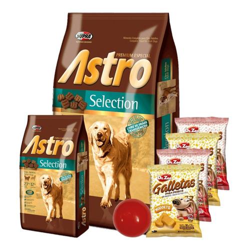 Comida Astro Adultos 17kg+ Promo -ver Foto- + Envío Gratis!