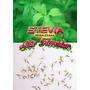 40 Sementes De Stevia Rebaudiana