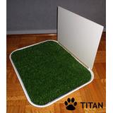 Baño Sanitario Para Perros Machos Con Accesorio Lateral
