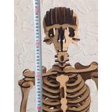 Rompecabeza 3d Didactico Esqueleto Humano 1 Metro
