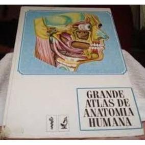 Livro Grande Atlas De Anatomia Humana Varios