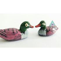 Patos Mandarín Atrayentes De Amor - Envío Gratis