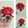 Caixinha Acrilico Com Rosa De Eva 10 Unidades