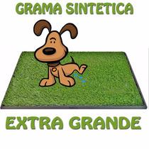 Sanitario Canino Pet Park Grama Caes Cachorro Extra Grande