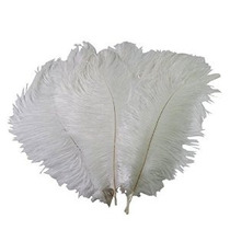 Mersuii 50 Pcs Decoración Avestruz Plumas 25-30cm) (blanco)