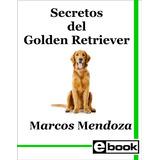 Golden Retriever Libro Adiestramiento Canino Cachorro Adulto