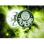 Título Sócio Clube Palmeiras-c/ Direito Ao Palmeiras Campo