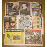 58 Láminas Escolares El Chino Historia Geografía Naturaleza