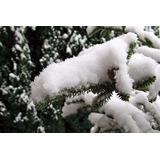 Nieve Artificial P/ Arbol Navidad Vidriera Piso Adorno Juego