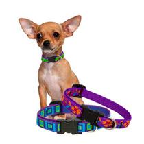 Collar Para Perro O Gato Extra Chico 15cm Lupine 1/2 6