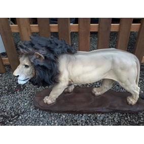 Leão Africano (tam Grande) Em Resina Pintura Na Cor Natural