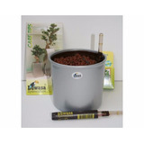 Maceta Hidroponia Planta Interior 13cmx12cm Kit Completo New