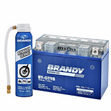 Bateria Xt 660 Gel Brandy By-gt9b + Reparador