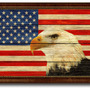 American Eagle National Textured Flag Print With Brown Gold