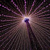100 Luz De Árbol De Navidad Del Led 10m Varios Colores Hadas