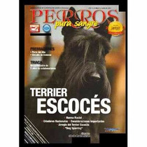 Revista Perros Terrier Escocés Febrero 2014 Envio Gratis