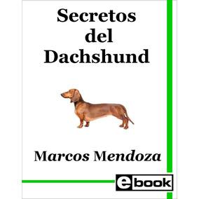 Dachshund Salchicha Libro Adiestramiento Cachorro Adulto